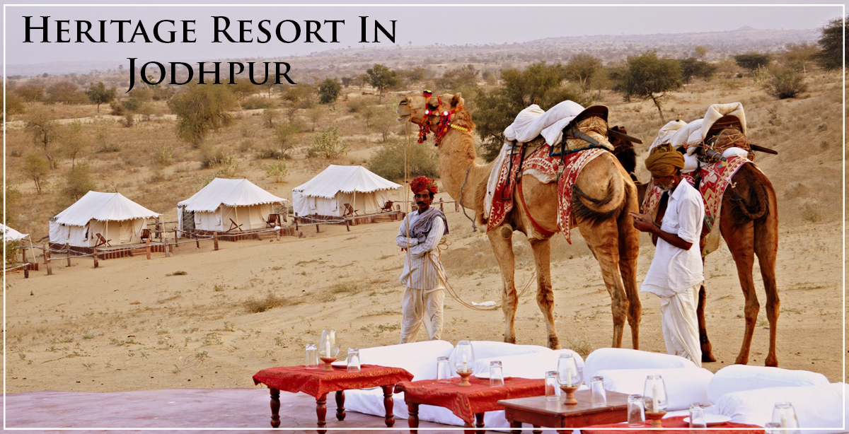 camel-safari-Jodhpur